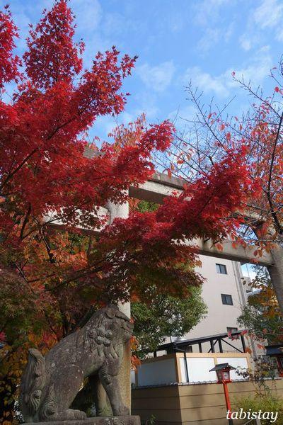 kyoto yasuikonpira